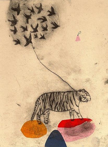 tigre oiseaux